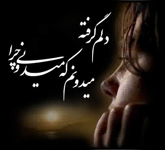 یک شعر در مورد همدلی دوستی از زبان شاعران ایرانی ziba.net